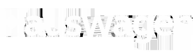 logo_HW-white-v2